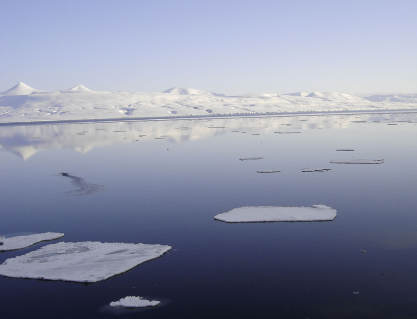 Warm Atlantic water drives the climate in the Arctic