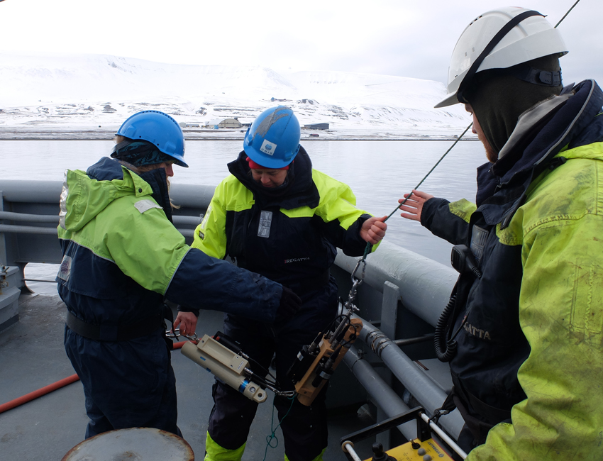 Cruising in Svalbard: A student perspective