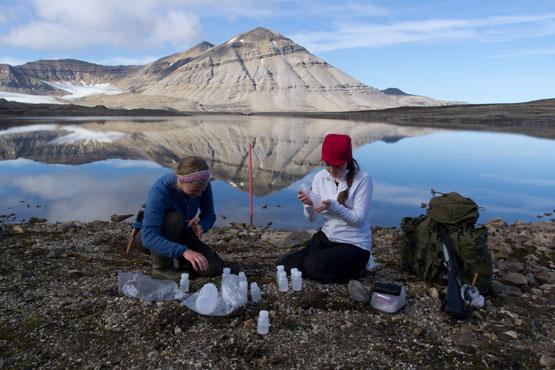 Fieldwork in Ny-Ålesund, Svalbard. Photo: Steve Coulson/UNIS