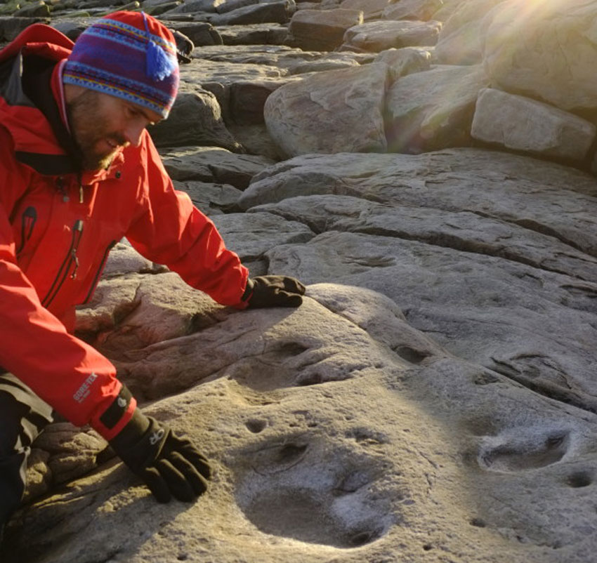 Dinosaur Footprints on the Roof of the World!
