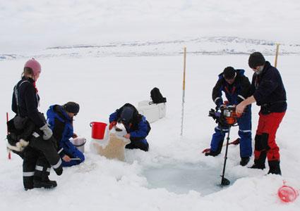 Cleopatra fieldwork, Rijpfjorden, Svalbard.