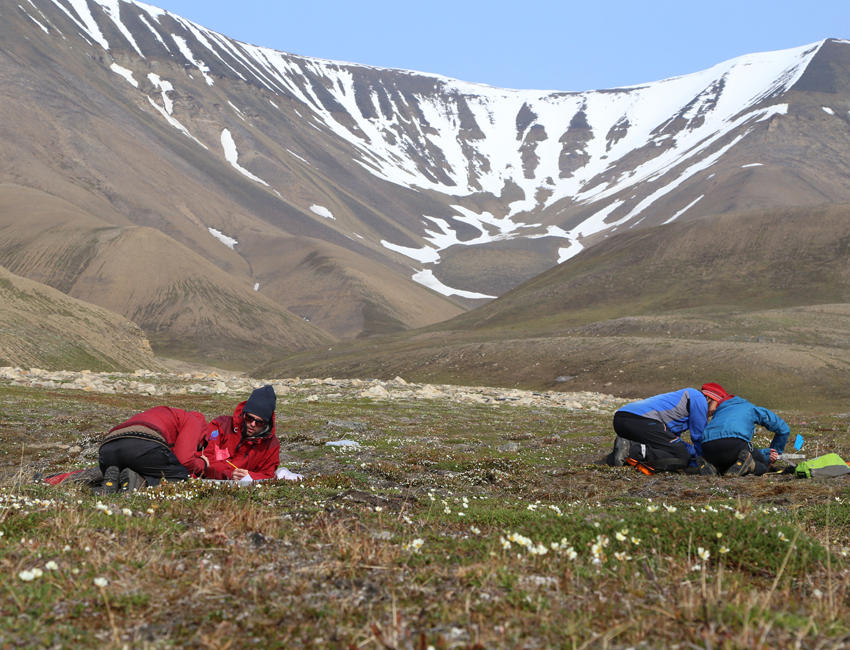 Student fieldwork at Hiorthhamn