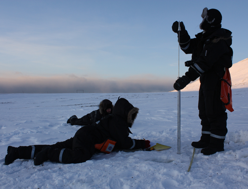 fieldwork ion Colessletta