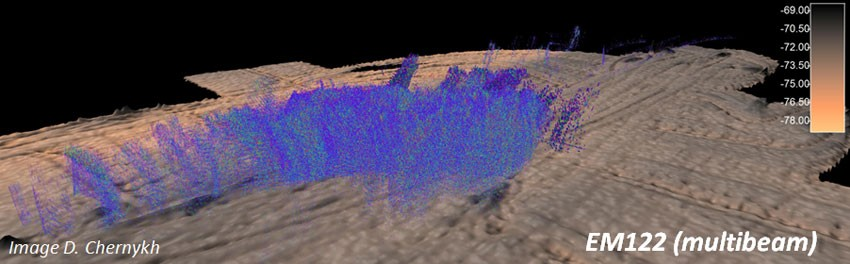 3D image of a methane seep site (blue-purple colours).