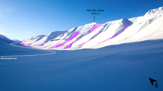 Slush avalanches in Todalen, Svalbard.