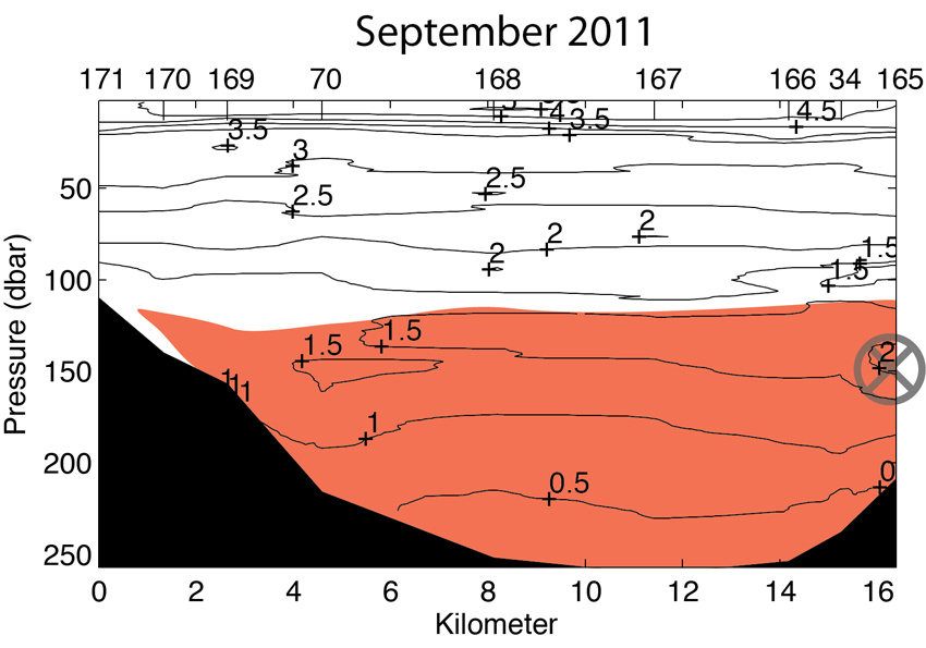 Isfjorden temperature section September 2011