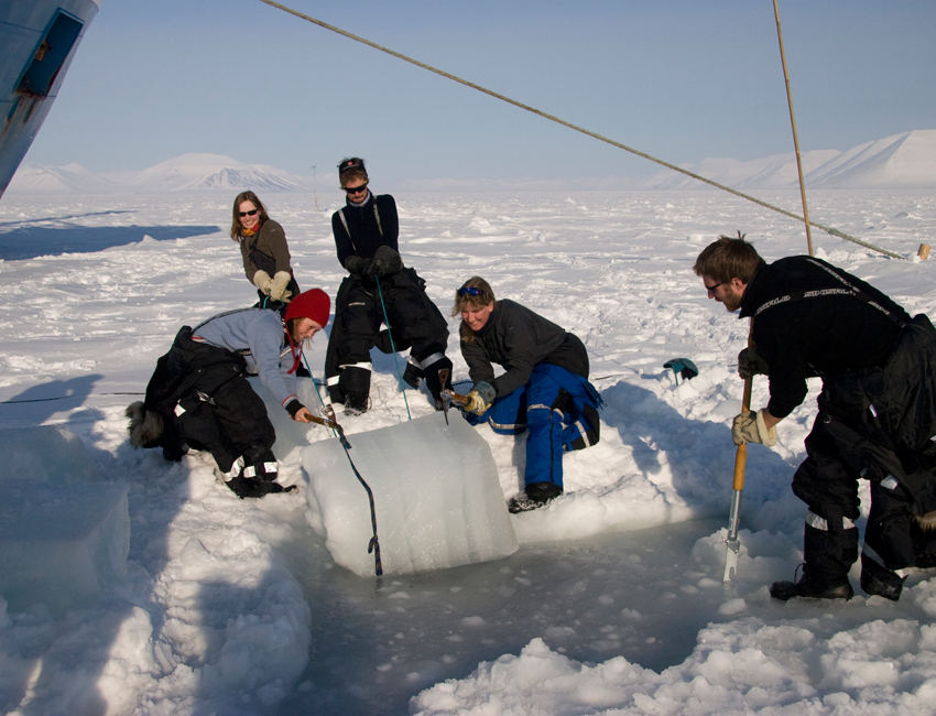 Large sea ice production affects the climate?