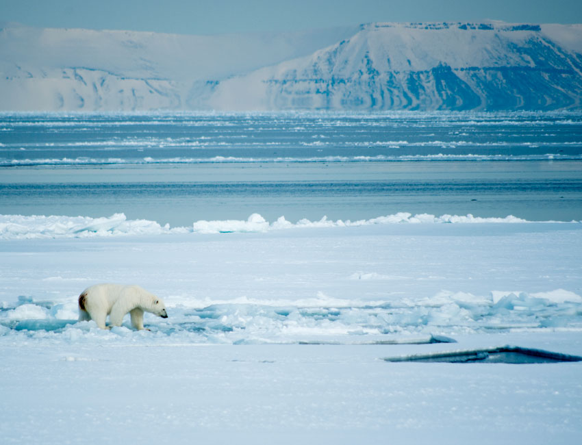 Will there be ice on the Svalbard fjords this winter?