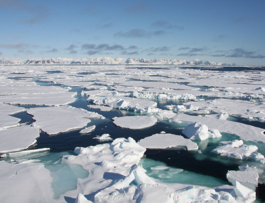How much do YOU contribute to the melting of sea ice in the Arctic?