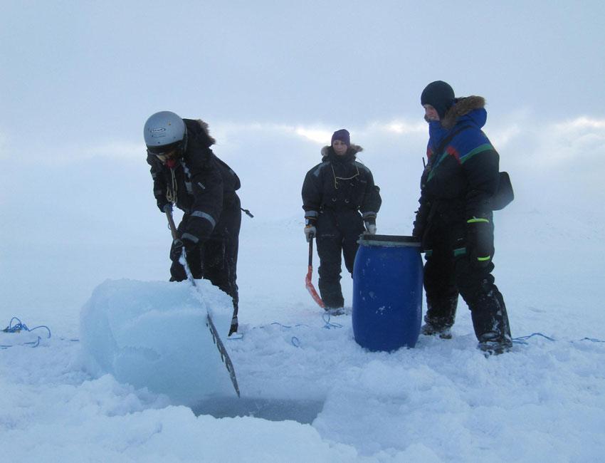 Fieldwork in Van Mijenfjorden