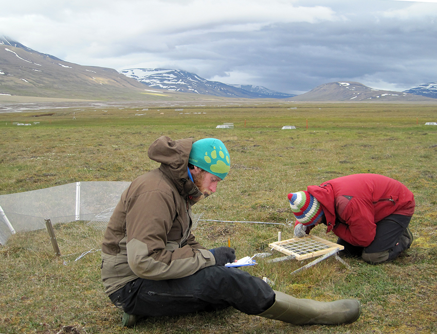 Matteo Petit Bon (right) is using point intercept method to assess the biomass in an undisturbing way, by counting and identifying plants within each square, which is then used to calculate how much biomass there is in each plot. Field assistant Cal Bachell keeps track of the findings. Photo: Eva Therese Jenssen/UNIS