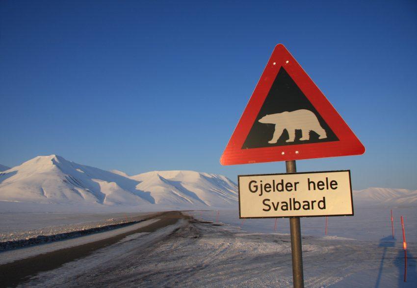 Varselskilt ved Isdammen utenfor Longyearbyen