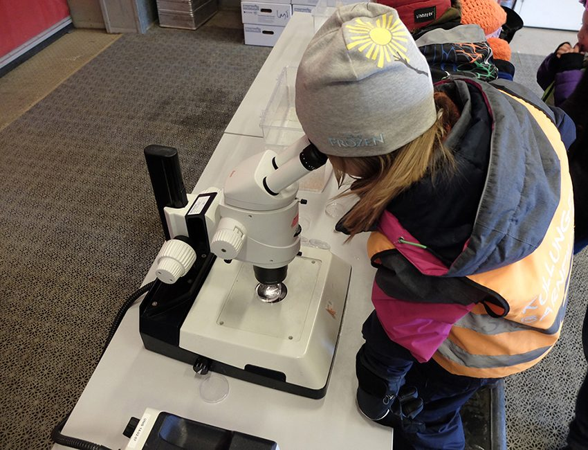 A young scientist studying copepods in a micropscope. Photo: Inger Lise Næss/UNIS