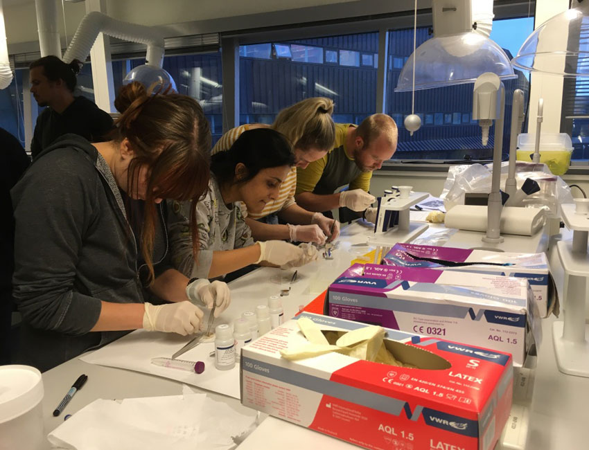 AB-332/832 students analysing samples in the UNIS teaching lab. Photo: Mads Schultz.