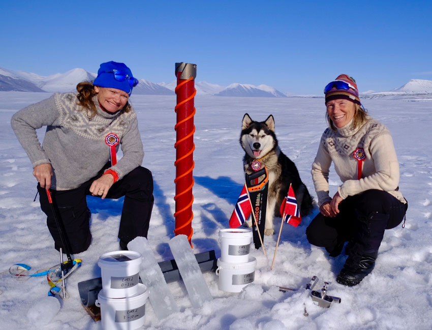 2020 – A good sea ice year in Svalbard?