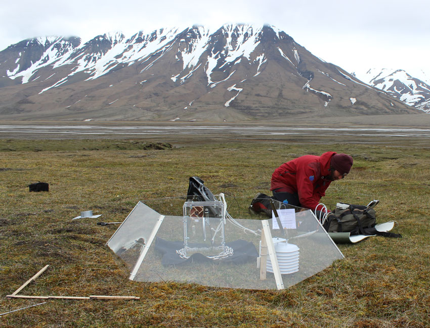 Herbivores and a warming climate affect tundra plant community nutrient levels