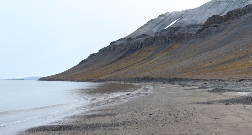 Kapp Lee on Edgeøya, Svalbard.