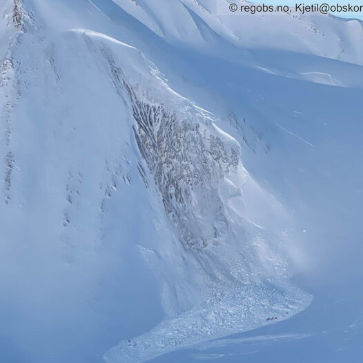 Featured image for: Avalanche accident report in English published