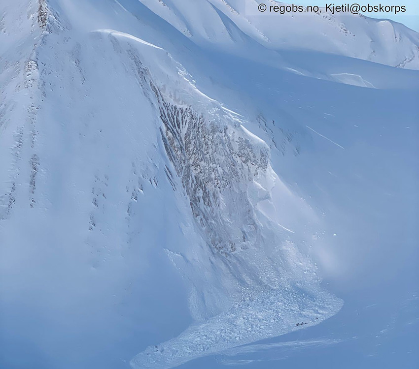 Avalanche accident report in English published