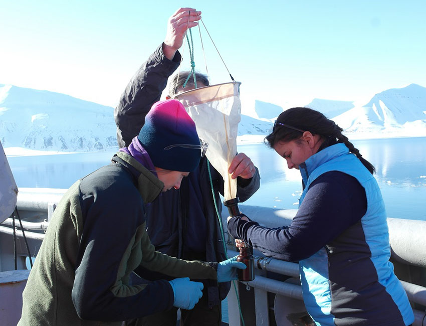 Understanding the roles of microbial eukaryotes in the High Arctic ecosystems