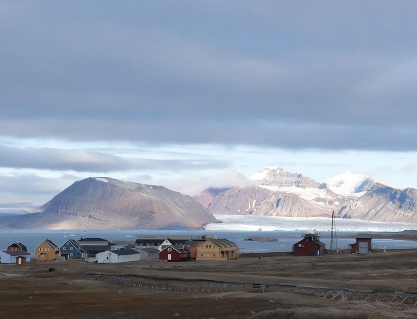 Found traces of antidepressants and painkillers in crustaceans on Svalbard