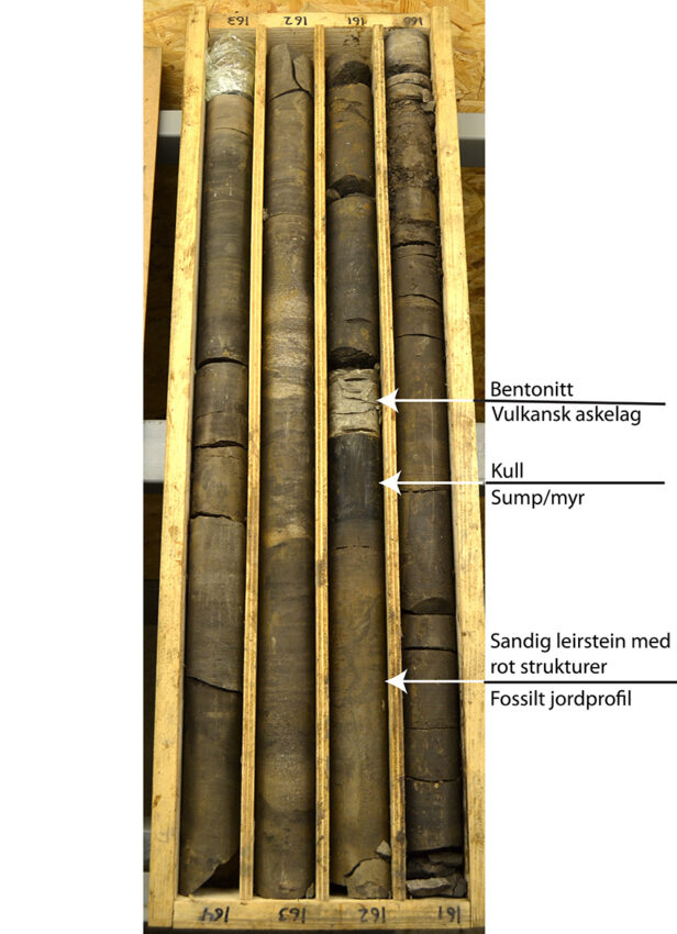 Drill cores from Adventdalen in Svalbard