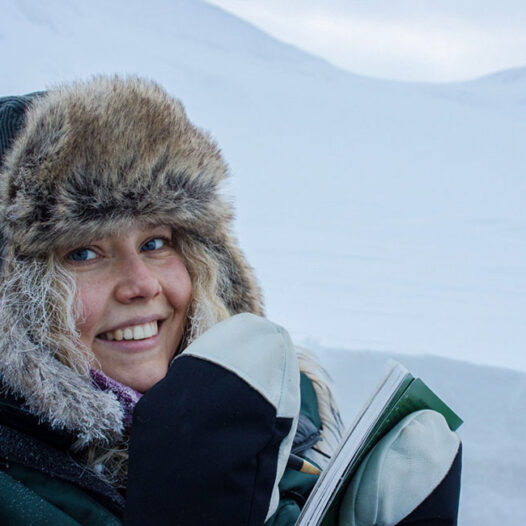 Featured image for: Study opportunities in the Arctic