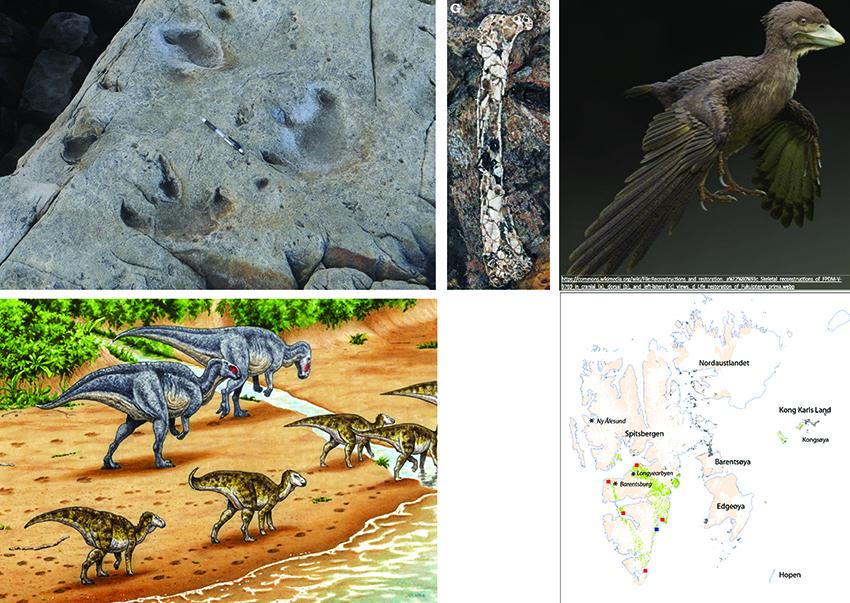Collage of wildlife in Svalbard 125 million years ago