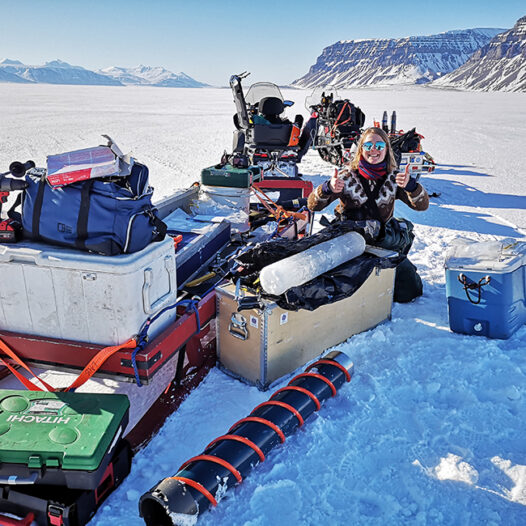 Featured image for: Fjord ice in Svalbard – an important kindergarten for seafloor animal babies