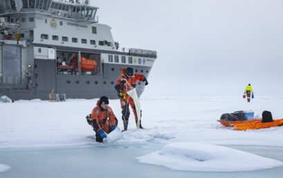 Featured image for 'Aliens in the Arctic? The outer-worldly life that resides within sea ice'