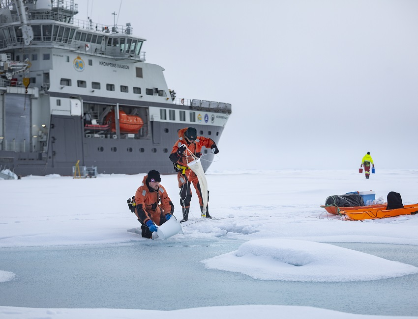 Aliens in the Arctic? The outer-worldly life that resides within sea ice