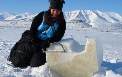 Featured image for 'Dramatic temperature rises in the Arctic hits vital sea ice algae'
